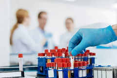 Close up of male hand that taking test tube. Our laboratory. Silhouettes of three scientists standing together and discussing main problems while looking forward Stock Photo