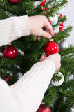 Close up of male hands decorating Christmas tree Royalty Free Stock Image