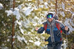 Close up of hiker in forest. Close up of  male hiker in forest Royalty Free Stock Photography