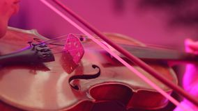 Close-up male musician playing violin on dark background with colorful lights. Musician playing violin. Close-up male musician playing violin on dark background stock video footage
