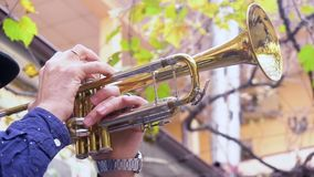 Musician outdoors. Close up male play on the trumpet outdoors stock footage
