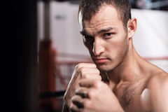 Close up of man in boxing position Stock Image
