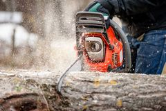 Close-up of man cutting trees from forest with chainsaw Stock Photography