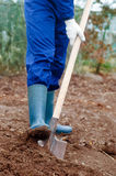 Close up of a man digging soil Royalty Free Stock Image
