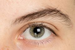 Close up man eye royalty free stock photography