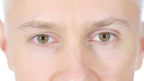 Close up of Man  Eyes. High quality Stock Photography