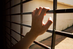 Close up Man hands are holding the cage door Royalty Free Stock Image