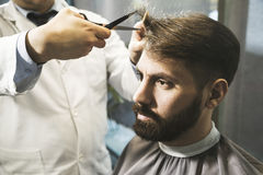 Close up of a man having his hair cut royalty free stock image