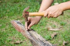 Close up of man hitting nail by hammer Royalty Free Stock Photo