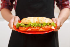 Close up of man holding dish with sandwich Royalty Free Stock Photography