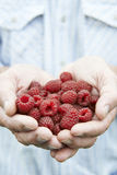 Close Up Of Man Holding Freshly Picked Raspberries Stock Photography