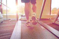 Close up of man legs walking on treadmill in gym Stock Image