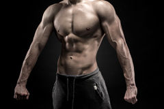 Close-up of man model torso posing showing perfect body. Close-up of man model torso posing and showing perfect body, shoulders, biceps, triceps and chest on Stock Photos