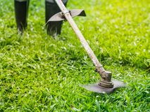 Close up the man mowing the grass. Gardening concept. royalty free stock photography