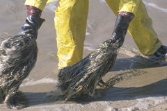 A close-up of a man participating in an environmental clean up in Huntington Beach, California Stock Photography