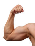 Close up of man's arm Stock Image