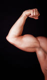 Close up of man's arm showing biceps Royalty Free Stock Image