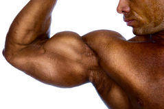 Close up of man's arm showing biceps. Isolated on a white background royalty free stock photography