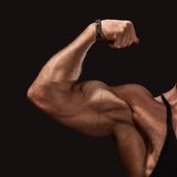 Close up of man's arm showing biceps Royalty Free Stock Photo