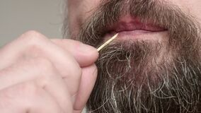 Close up of man`s bearded face. Man chew toothpick while thinking.