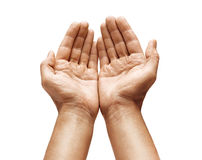 Close up of man`s cupped hands show something on white background. Palms up. High resolution product Royalty Free Stock Images