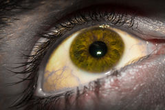 Close up of man's eye, detailed with dark edges Royalty Free Stock Photos