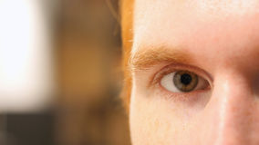 Close up of man's eye , face , macro Stock Photos