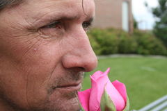 Man With a Pink Rose Stock Images