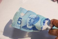 A close up of man`s hand and Canadian money- $5.00 bill. Canadian $5.00 currency. Close up of Sir Wilfrid Laurier. This picture can be used as a magazine front stock photo