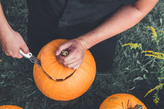 Close up of man's hand cuts  lid from  pumpkin as he prepares  jack-o-lantern. Royalty Free Stock Photo