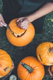 Close up of man's hand cuts  lid from  pumpkin as he prepares  jack-o-lantern. Stock Photo