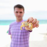 Close up of man's hand holding crab Royalty Free Stock Photography