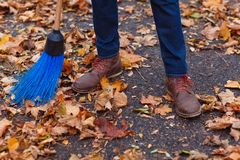 Close-up of a man`s foot in fallen leaves with a broom. stock photography