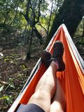 Man`s legs in hammock. A close up of man`s legs in a hammock at a campsite in the forest Royalty Free Stock Image