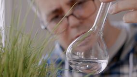 Close-up of a man scientist looking at the contents of a glass flask with a clear liquid next to the growing green grass. Close-up of a man scientist`s face in a stock video