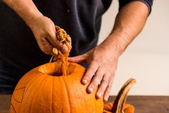 Male hands carving pumpkin taking out seeds Royalty Free Stock Images