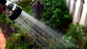 Close-up of a man watering his garden with a hose spouting water.
