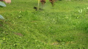 Close up of man working with trimmer cutting grass. In garden. Shot on Canon XA25. Full HD 1080p. Progressive scan 25fps. Tripod stock video footage
