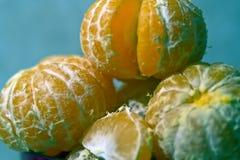 Close up mandarins. Five naked mandarins close up before eating royalty free stock photos