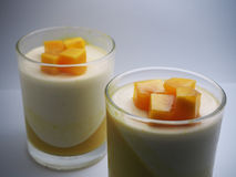 Close up mango pan cotta Royalty Free Stock Photos