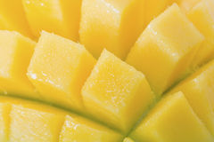 Close up of mango scored and spread apart Stock Photography