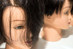 Close-up of manikin head Royalty Free Stock Photo
