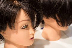 Close-up of manikin head Royalty Free Stock Photos
