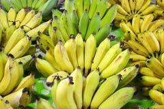 Close up many banana Royalty Free Stock Photos