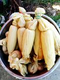 Close up many boiled corn in the hot pot on street food market. royalty free stock photos