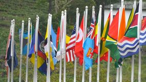 Close up of many bright and various world flags waving at wind on flagpoles. Tea plantation at background.  stock video