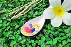 Close up many colorful medicine tablet on the spoon with white flower and dried tree branch Royalty Free Stock Images