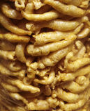 Close up many fish maw Royalty Free Stock Image