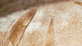 Close up of many fresh loafs of wheat bread stock footage