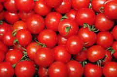 Close up of many fresh red tomatoes. Big fruit type Royalty Free Stock Photo